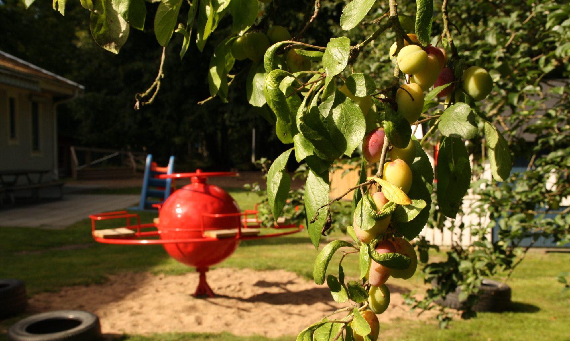 Föräldrakooperativet Lövet